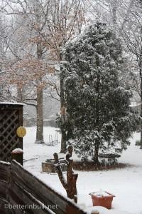 Beginning of snow storm of 2010