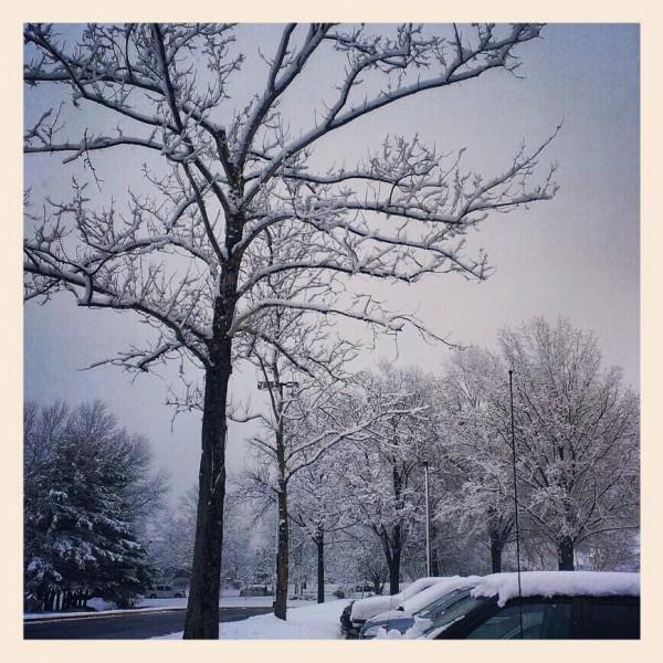 snowy spring break