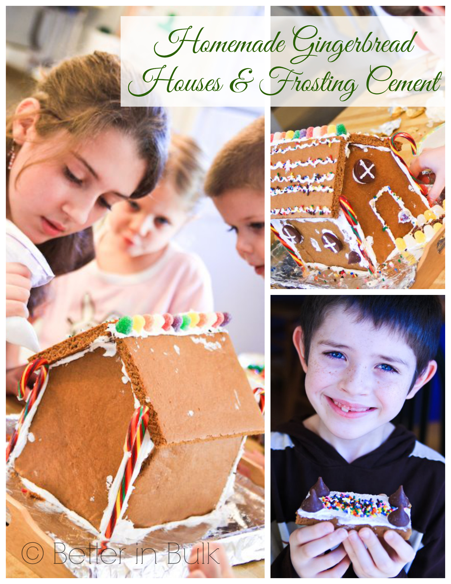 Homemade Gingerbread Houses Frosting Cement