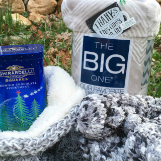 My Favorite Things 2015 Giveaway from Food Fun Family crop